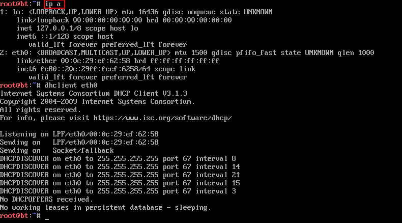 dhcp starvation
